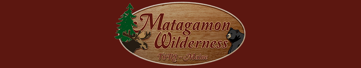 Maine Bear Hunts, Matagamon Wilderness Campground & Cabins, Patten, Maine